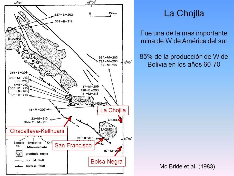 Chacaltaya-Kellhuani Bolsa Negra San Francisco La Chojlla Mc Bride et al. (1983) La Chojlla Fue una de la mas importante mina de W de América del sur