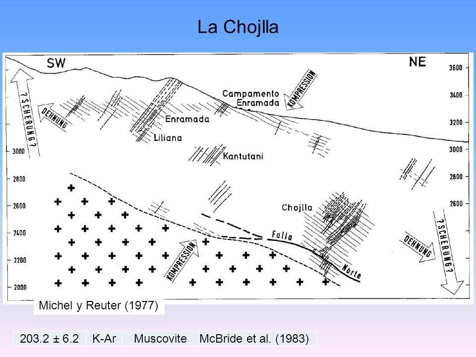 Michel y Reuter (1977) 203.2 ± 6.2K-ArMuscoviteMcBride et al. (1983) La Chojlla
