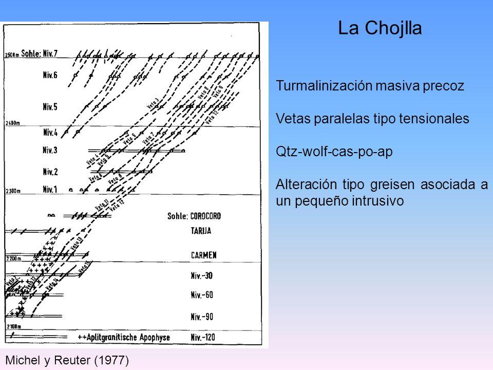 Michel y Reuter (1977) La Chojlla Turmalinización masiva precoz Vetas paralelas tipo tensionales Qtz-wolf-cas-po-ap Alteración tipo greisen asociada a
