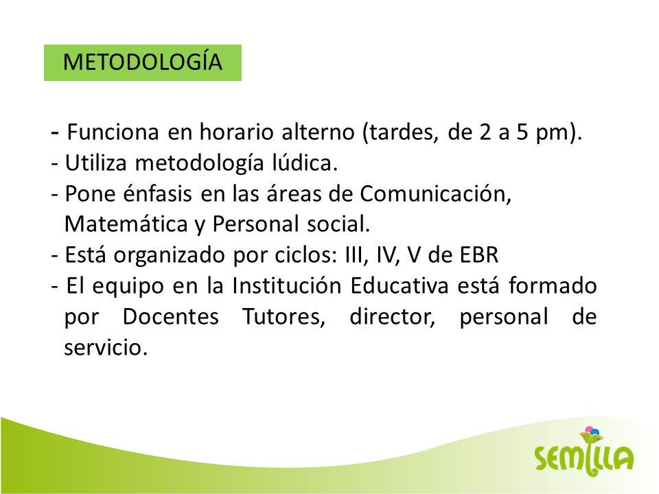 METODOLOGÍA - Funciona en horario alterno (tardes, de 2 a 5 pm).