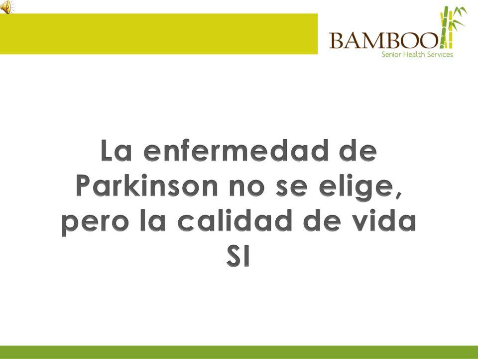 En Bamboo usted encontrará más que una intervención farmacológica.