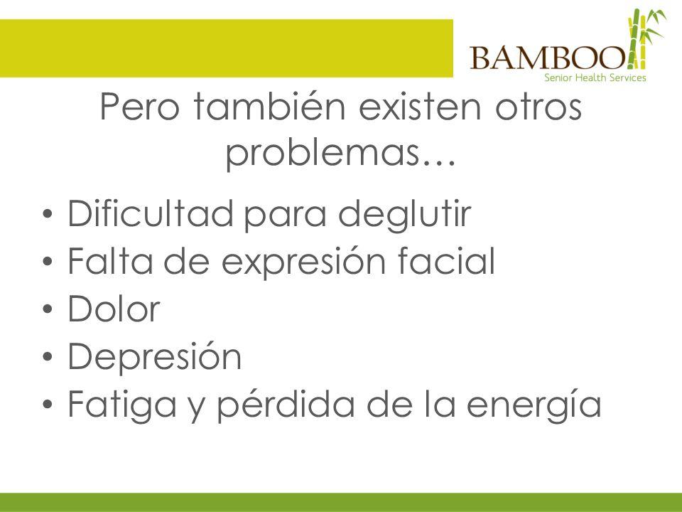 BAMBOO SENIOR HEALTH SERVICES Clínica Especializada en Medicina del Adulto Mayor Av.