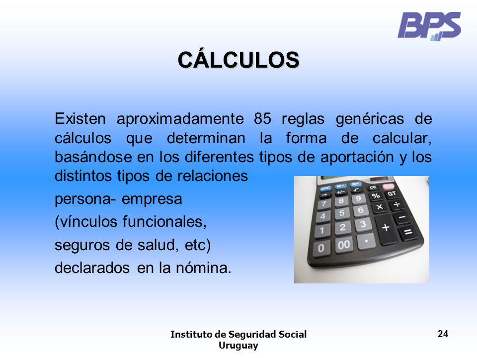 Instituto de Seguridad Social Uruguay 24 CÁLCULOS Existen aproximadamente 85 reglas genéricas de cálculos que determinan la forma de calcular, basándo