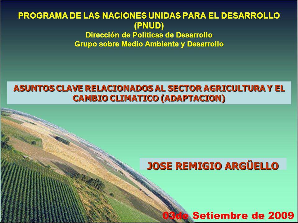 PROGRAMA DE LAS NACIONES UNIDAS PARA EL DESARROLLO (PNUD) Dirección de Políticas de Desarrollo Grupo sobre Medio Ambiente y Desarrollo 03de Setiembre