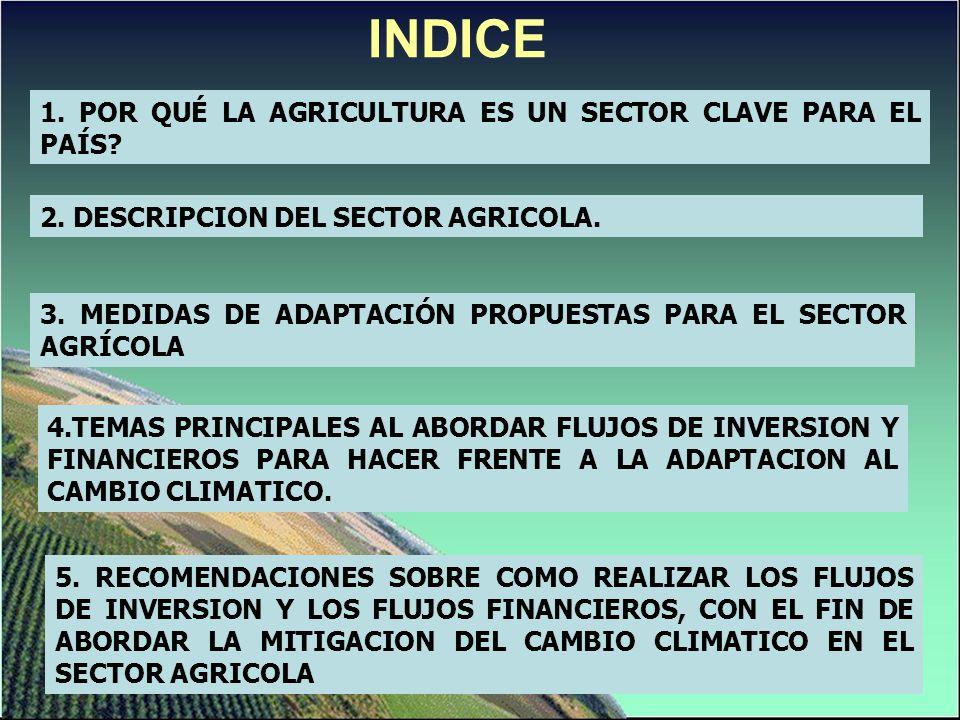 INDICE 1. POR QUÉ LA AGRICULTURA ES UN SECTOR CLAVE PARA EL PAÍS? 2. DESCRIPCION DEL SECTOR AGRICOLA. 5. RECOMENDACIONES SOBRE COMO REALIZAR LOS FLUJO