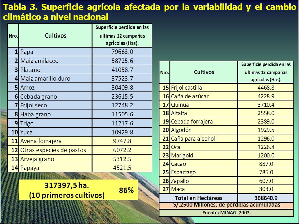 Tabla 3. Superficie agrícola afectada por la variabilidad y el cambio climático a nivel nacional 317397,5 ha. (10 primeros cultivos) 86%