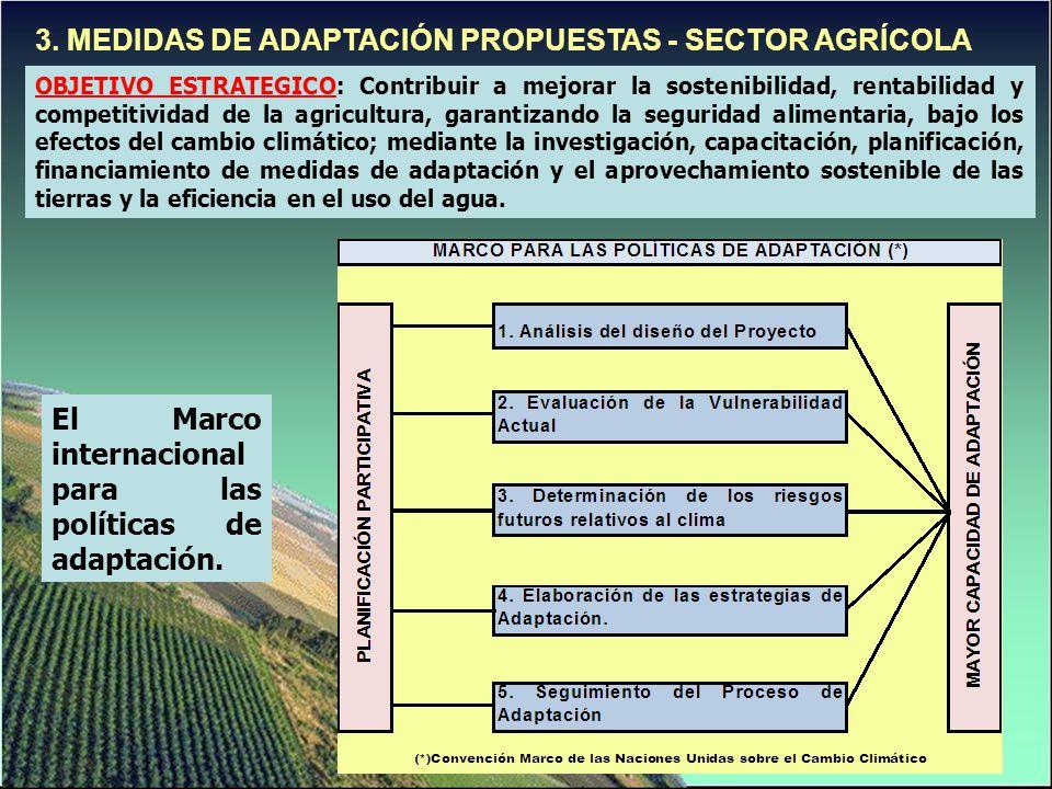 3. MEDIDAS DE ADAPTACIÓN PROPUESTAS - SECTOR AGRÍCOLA OBJETIVO ESTRATEGICO: Contribuir a mejorar la sostenibilidad, rentabilidad y competitividad de l