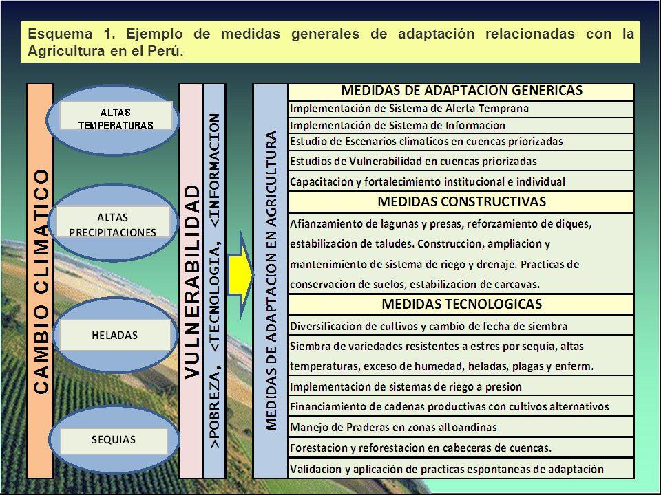 Eje Estratégico 1: Conservación de la biodiversidad y los RRNN Eje Estratégico 2: Gestión del Agua Eje Estratégico 3: Cadenas de Valor Agrícola y Ecosistemas Sostenibles Eje Estratégico 4: Protección de Infraestructura de Servicios Productivos [hidráulica (bocatomas, canales de riego, tuberías de impulsión de agua, drenes agrícolas y defensas ribereñas), Vial y energética] Escenario Climático Medida de AdaptaciónEjes TransversalesEntidades Responsables Gestión del RiesgoGestión del Conocimiento MATRIZ DE MEDIDAS DE ADAPTACION.