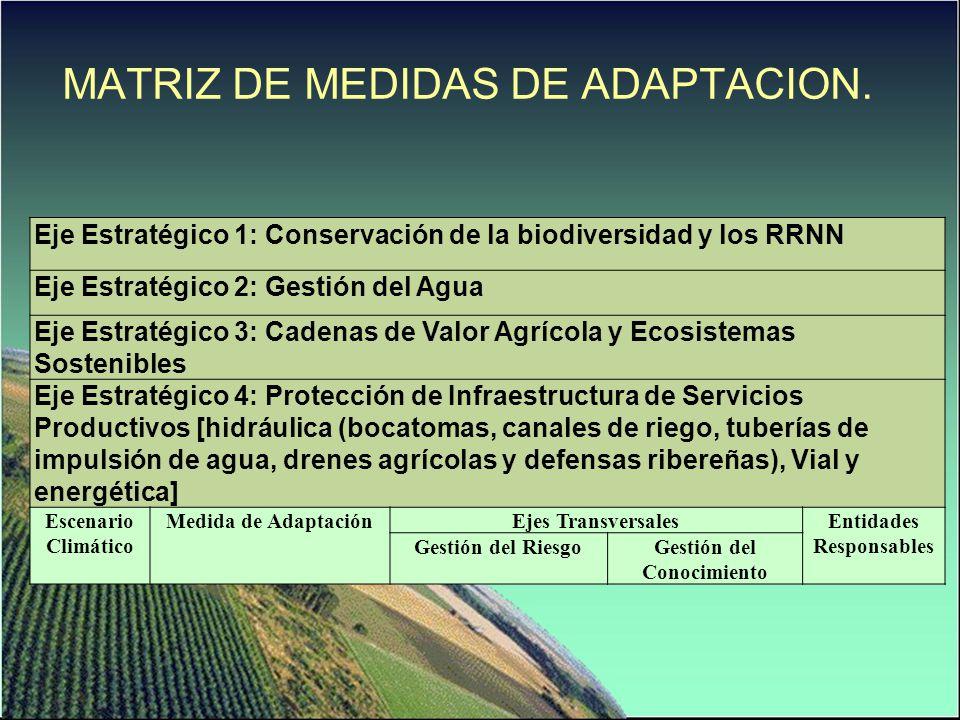 Eje Estratégico 1: Conservación de la biodiversidad y los RRNN Eje Estratégico 2: Gestión del Agua Eje Estratégico 3: Cadenas de Valor Agrícola y Ecos