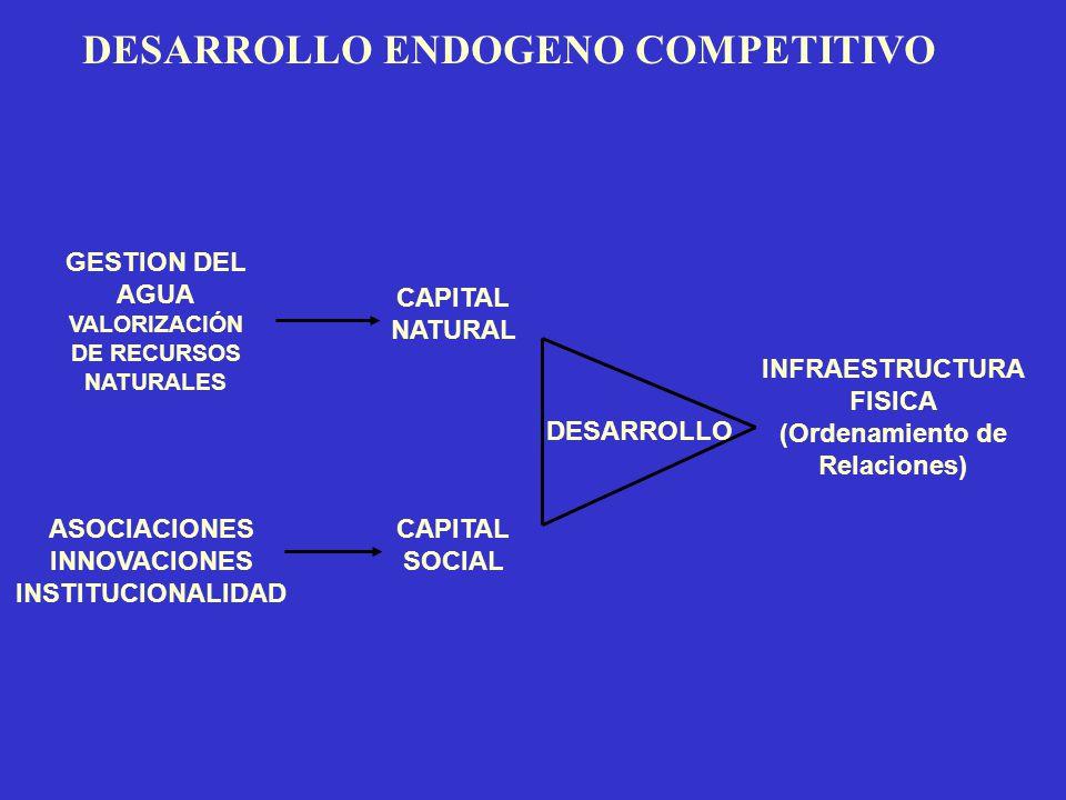 DESARROLLO ENDOGENO COMPETITIVO CAPITAL NATURAL CAPITAL SOCIAL INFRAESTRUCTURA FISICA (Ordenamiento de Relaciones) ASOCIACIONES INNOVACIONES INSTITUCI