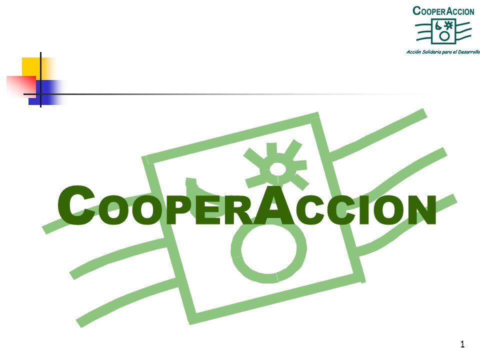1 C OOPER A CCION