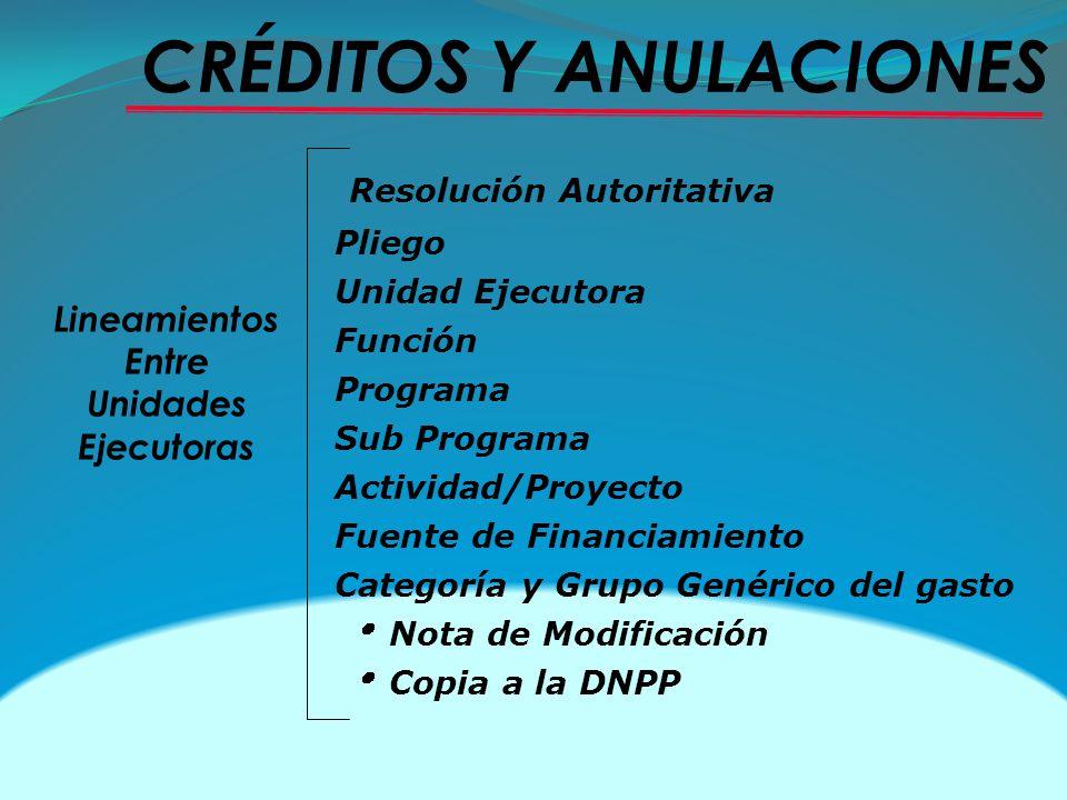 Resolución Autoritativa Pliego Unidad Ejecutora Función Programa Sub Programa Actividad/Proyecto Fuente de Financiamiento Categoría y Grupo Genérico d