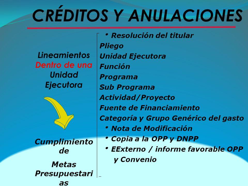 Resolución del titular Pliego Unidad Ejecutora Función Programa Sub Programa Actividad/Proyecto Fuente de Financiamiento Categoría y Grupo Genérico de