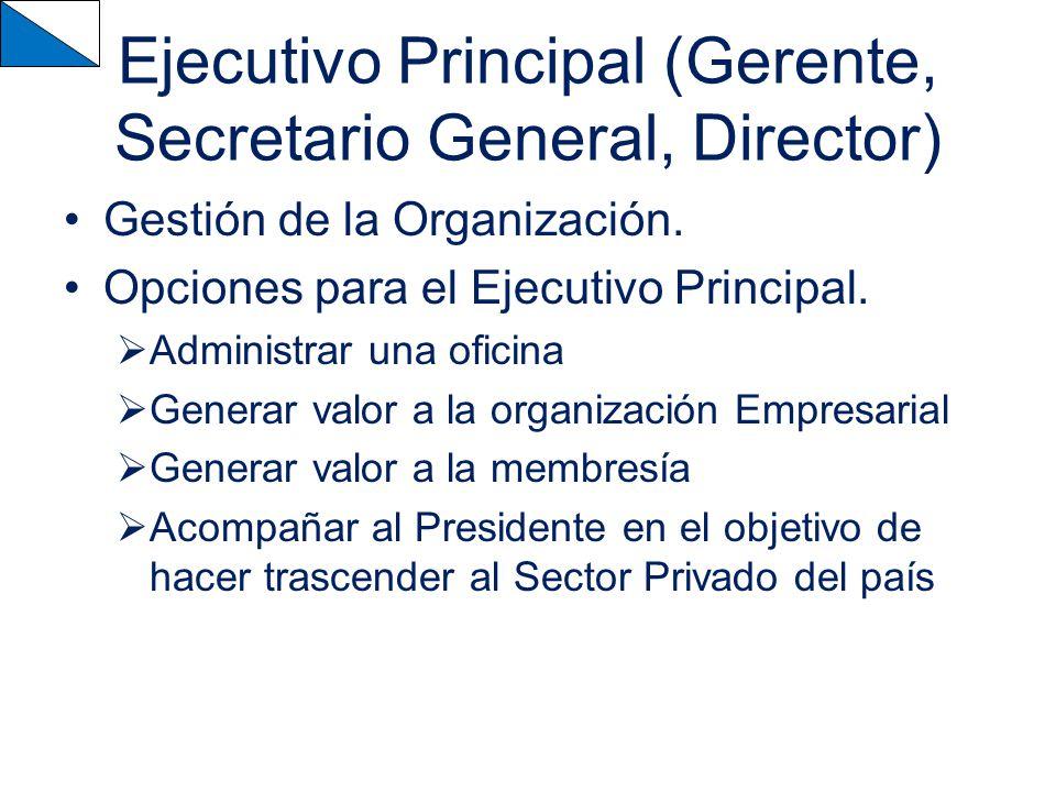 Ejecutivo Principal (Gerente, Secretario General, Director) Gestión de la Organización.
