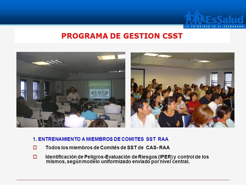 PROGRAMA DE GESTION CSST 1. ENTRENAMIENTO A MIEMBROS DE COMITES SST RAA Todos los miembros de Comités de SST de CAS- RAA Identificación de Peligros-Ev