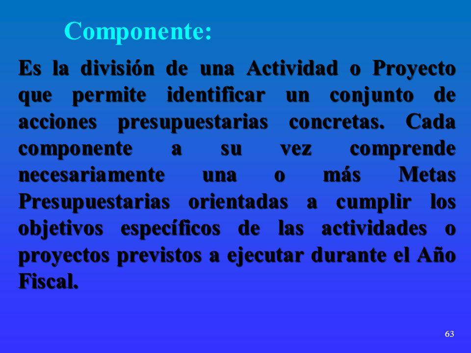 63 Componente: Es la división de una Actividad o Proyecto que permite identificar un conjunto de acciones presupuestarias concretas. Cada componente a