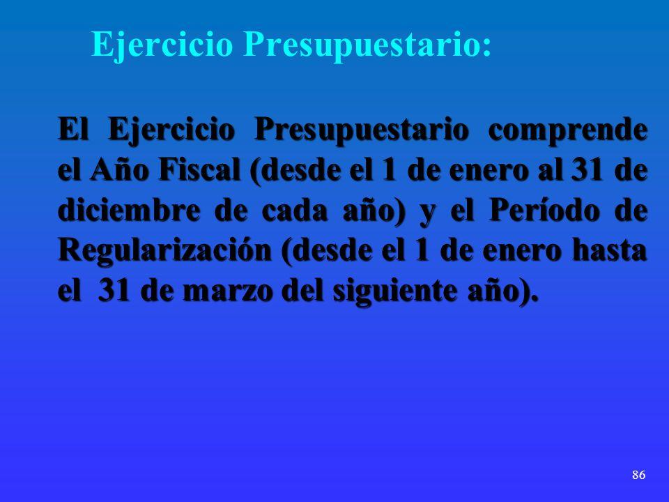 86 Ejercicio Presupuestario: El Ejercicio Presupuestario comprende el Año Fiscal (desde el 1 de enero al 31 de diciembre de cada año) y el Período de