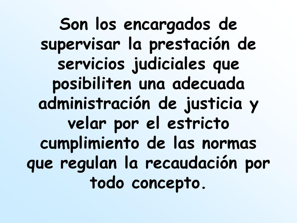 Son los encargados de supervisar la prestación de servicios judiciales que posibiliten una adecuada administración de justicia y velar por el estricto