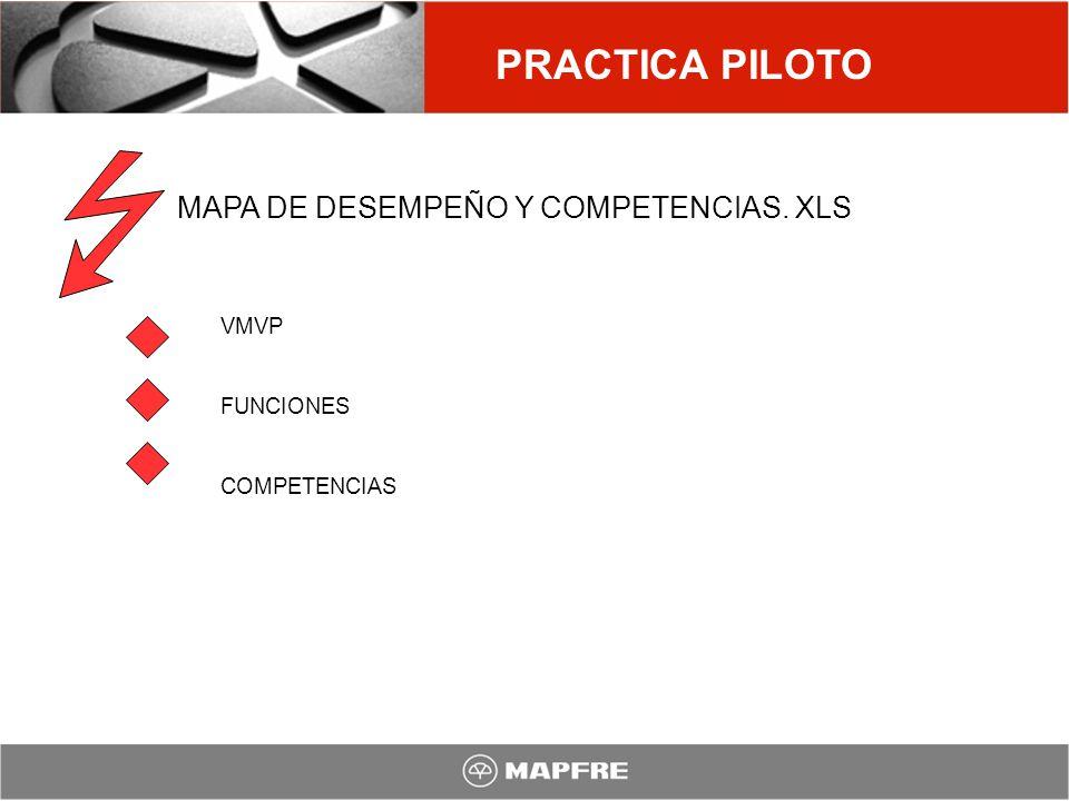 MAPA DE DESEMPEÑO Y COMPETENCIAS. XLS VMVP FUNCIONES COMPETENCIAS PRACTICA PILOTO