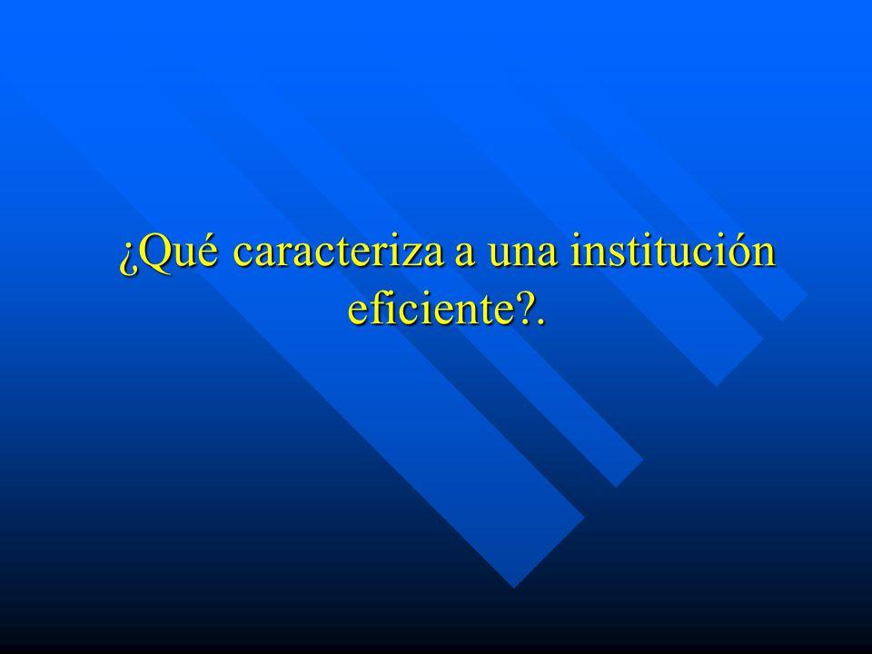 ¿Qué caracteriza a una institución eficiente?.