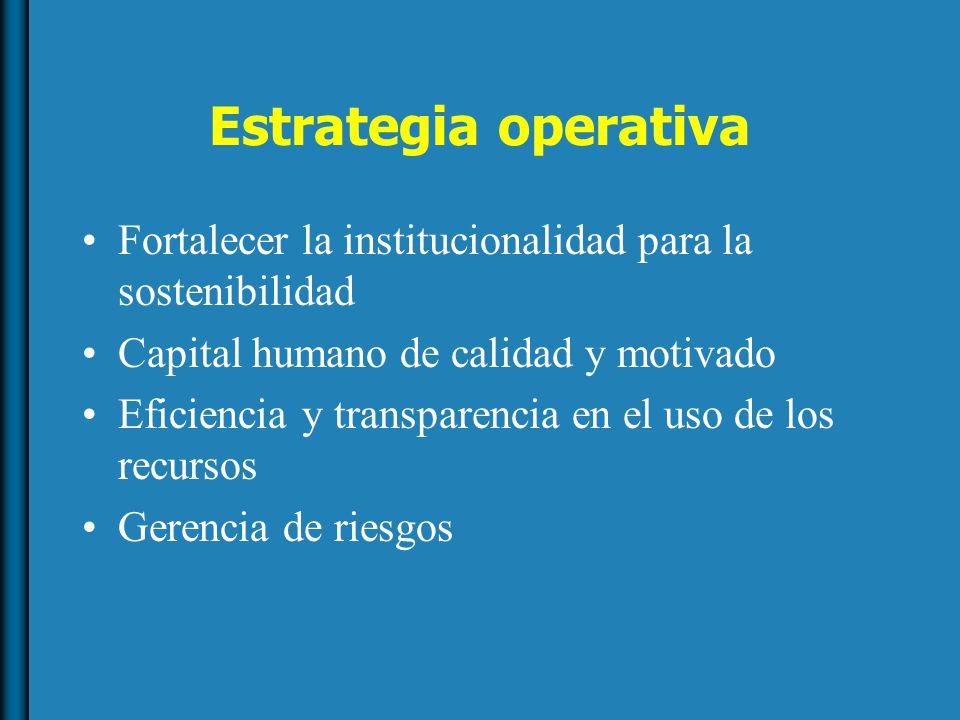Estrategia operativa Fortalecer la institucionalidad para la sostenibilidad Capital humano de calidad y motivado Eficiencia y transparencia en el uso de los recursos Gerencia de riesgos