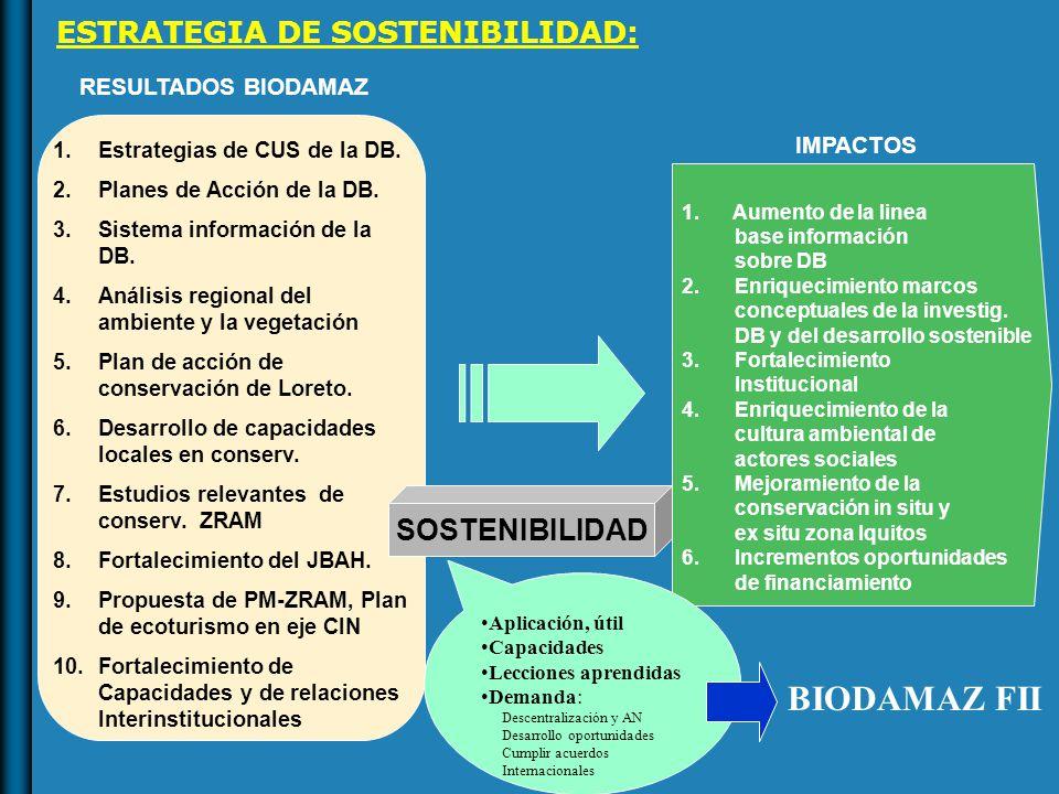 1.Estrategias de CUS de la DB. 2.Planes de Acción de la DB.