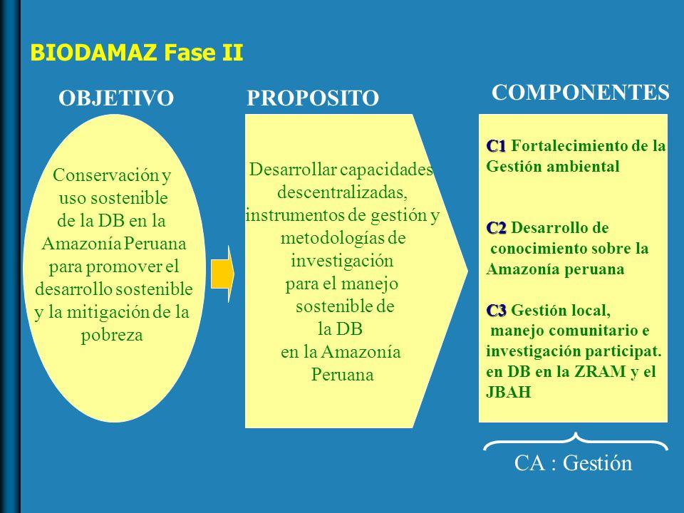 BIODAMAZ Fase II Conservación y uso sostenible de la DB en la Amazonía Peruana para promover el desarrollo sostenible y la mitigación de la pobreza OBJETIVO Desarrollar capacidades descentralizadas, instrumentos de gestión y metodologías de investigación para el manejo sostenible de la DB en la Amazonía Peruana PROPOSITO C1 C1 Fortalecimiento de la Gestión ambiental C2 C2 Desarrollo de conocimiento sobre la Amazonía peruana C3 C3 Gestión local, manejo comunitario e investigación participat.