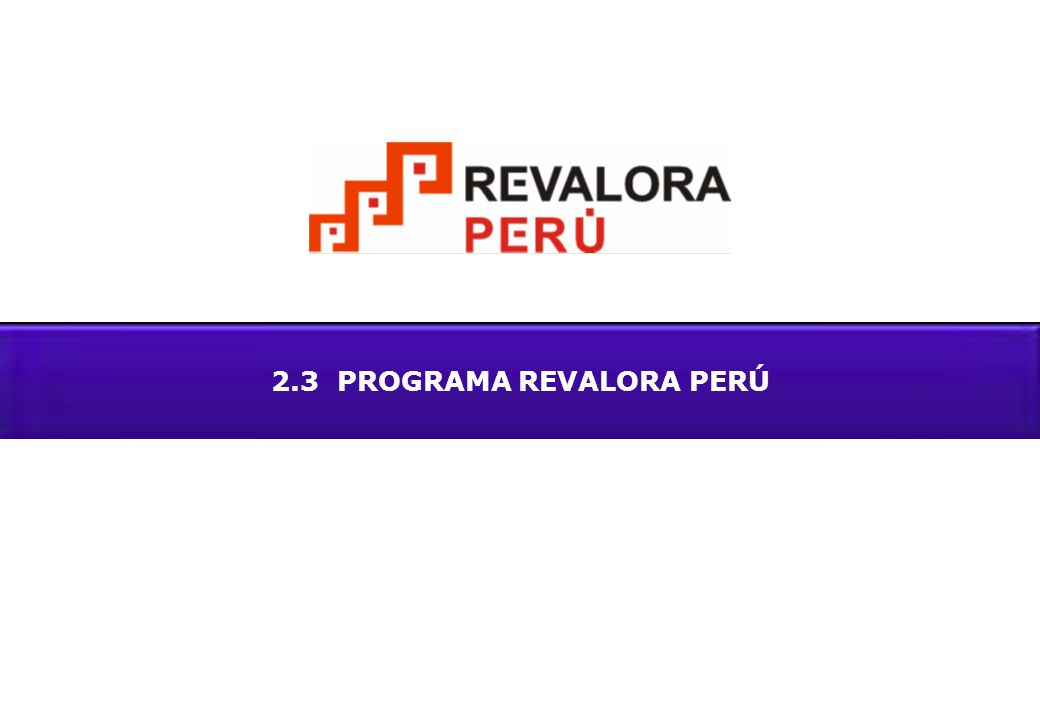 2.3 PROGRAMA REVALORA PERÚ