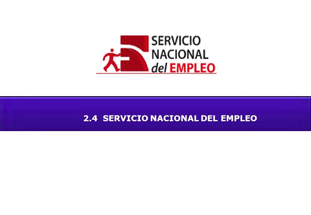 2.4 SERVICIO NACIONAL DEL EMPLEO