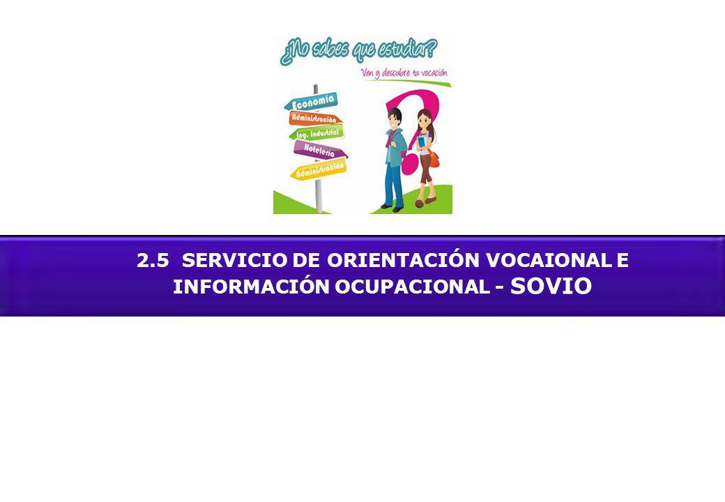 2.5 SERVICIO DE ORIENTACIÓN VOCAIONAL E INFORMACIÓN OCUPACIONAL - SOVIO