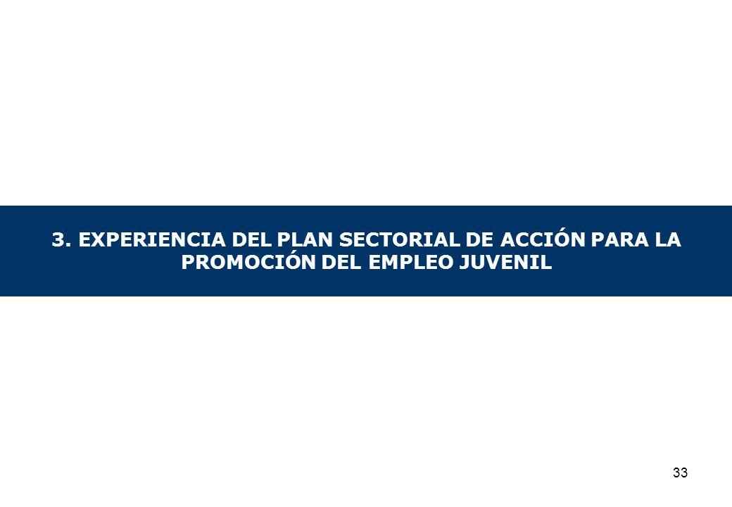 3. EXPERIENCIA DEL PLAN SECTORIAL DE ACCIÓN PARA LA PROMOCIÓN DEL EMPLEO JUVENIL 33