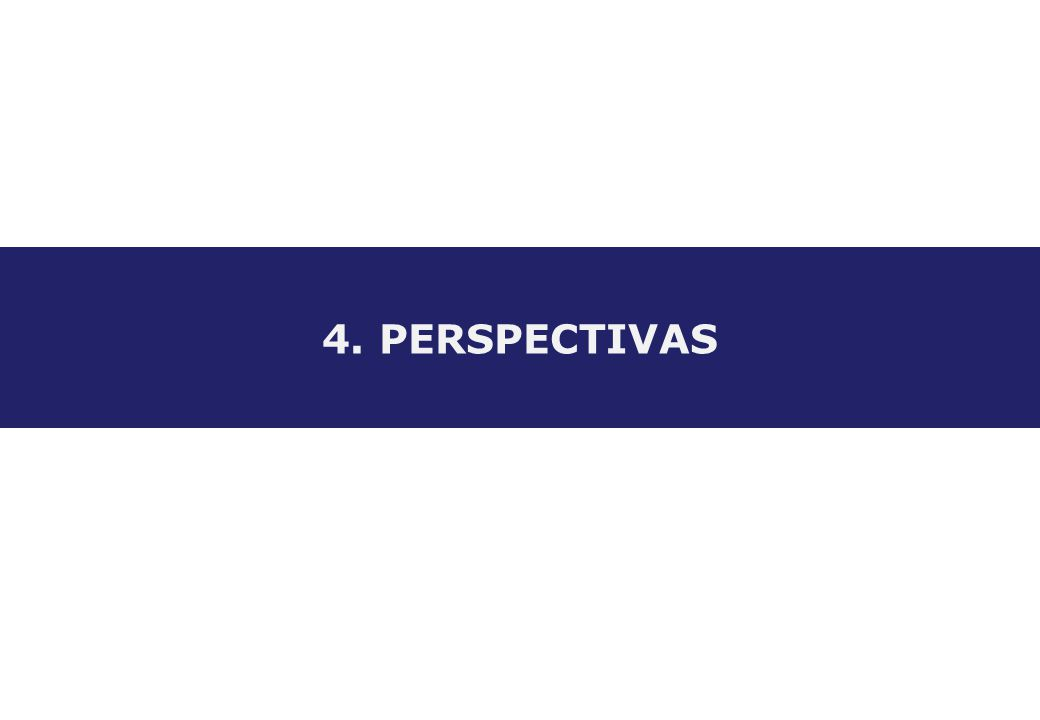 4. PERSPECTIVAS