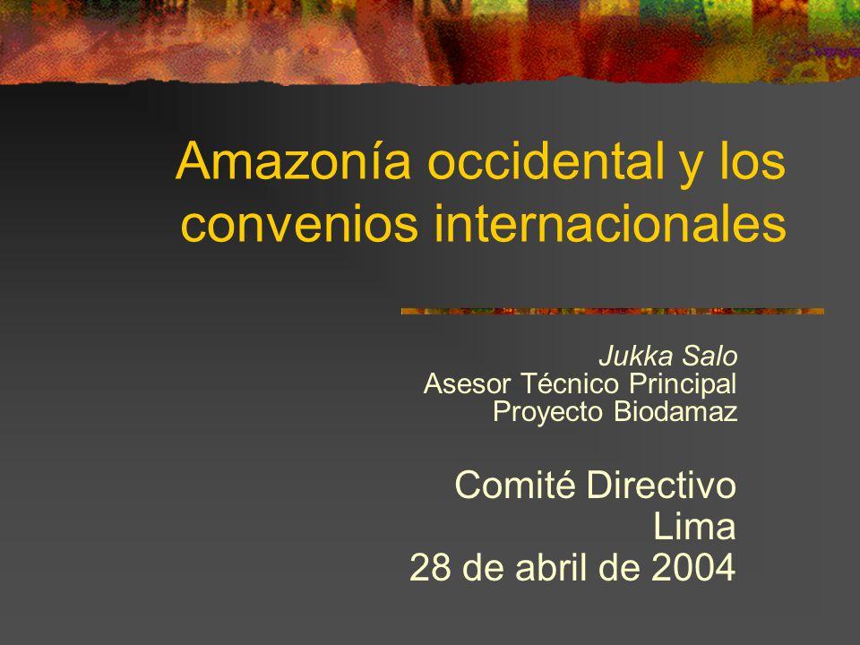 Amazonía occidental y los convenios internacionales Jukka Salo Asesor Técnico Principal Proyecto Biodamaz Comité Directivo Lima 28 de abril de 2004