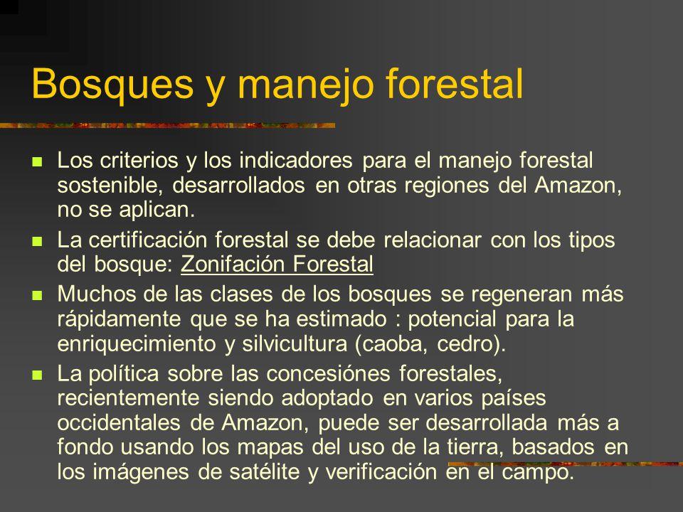 Bosques y manejo forestal Los criterios y los indicadores para el manejo forestal sostenible, desarrollados en otras regiones del Amazon, no se aplica