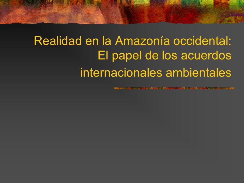 Realidad en la Amazonía occidental: El papel de los acuerdos internacionales ambientales