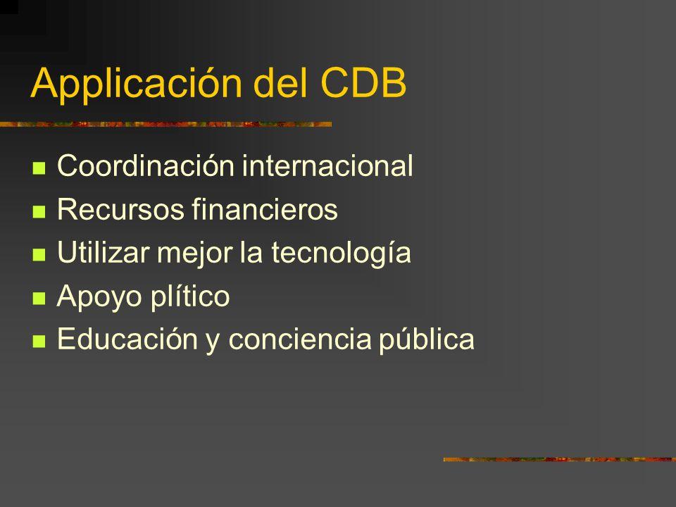 Applicación del CDB Coordinación internacional Recursos financieros Utilizar mejor la tecnología Apoyo plítico Educación y conciencia pública
