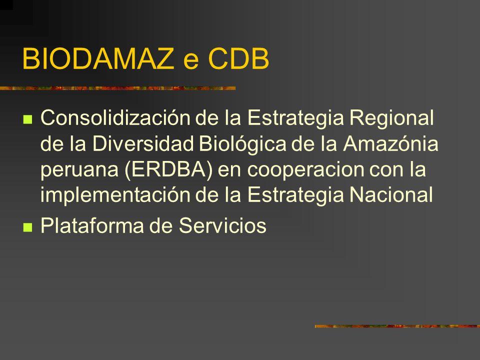 BIODAMAZ e CDB Consolidización de la Estrategia Regional de la Diversidad Biológica de la Amazónia peruana (ERDBA) en cooperacion con la implementació