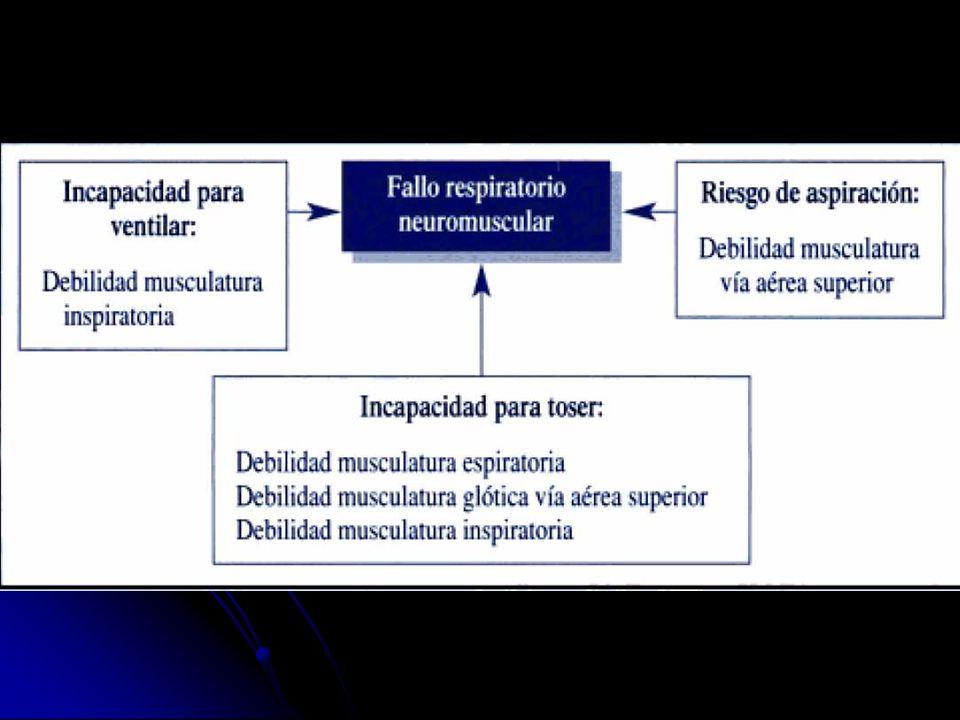 Hidratación adecuada Nutrición precoz Terapia física Profilaxis de la TVP Alivio del dolor y la depresión.