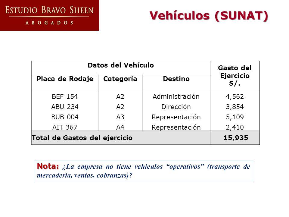 Vehículos (SUNAT) Nota: Nota: ¿La empresa no tiene vehículos operativos (transporte de mercadería, ventas, cobranzas)? Datos del Vehículo Gasto del Ej
