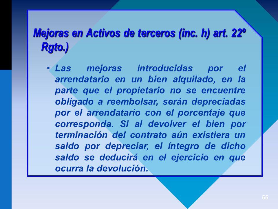 55 Mejoras en Activos de terceros (inc.h) art.