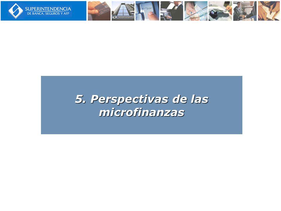 5. Perspectivas de las microfinanzas