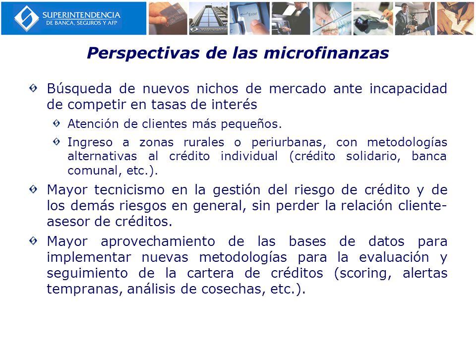 Perspectivas de las microfinanzas Búsqueda de nuevos nichos de mercado ante incapacidad de competir en tasas de interés Atención de clientes más peque