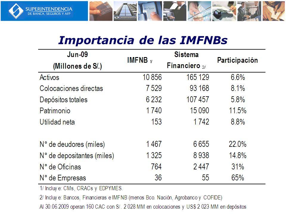 Importancia de las IMFNBs