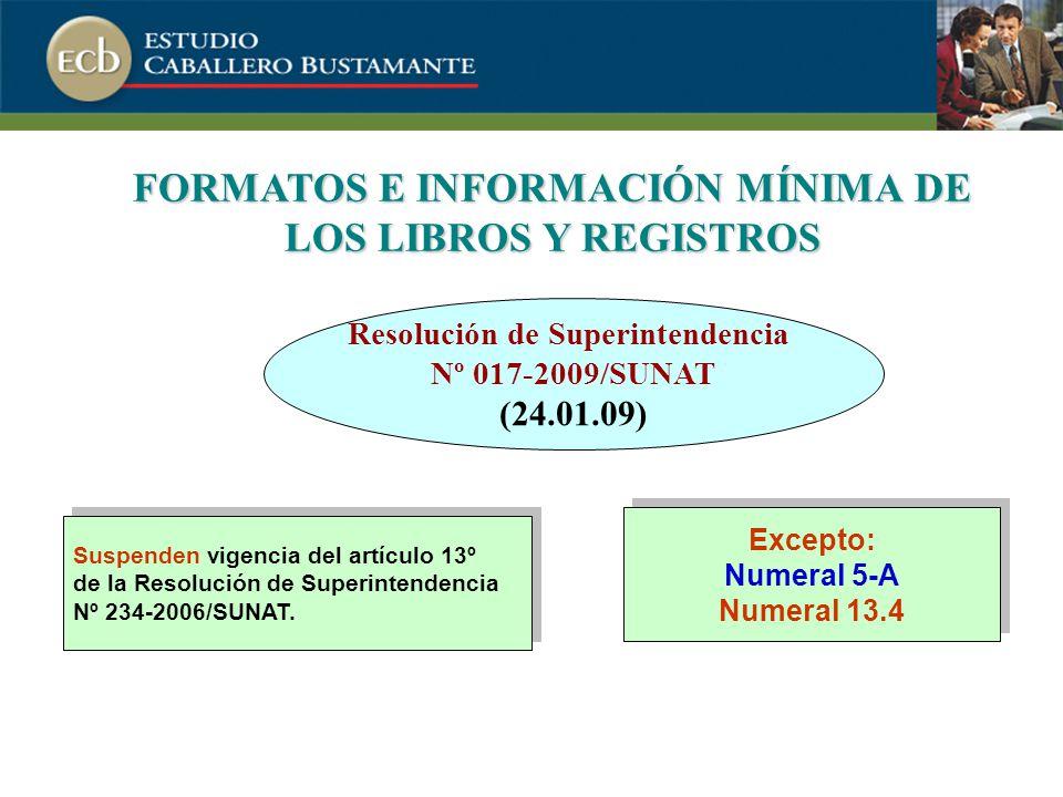 FORMATOS E INFORMACIÓN MÍNIMA DE LOS LIBROS Y REGISTROS Suspenden vigencia del artículo 13º de la Resolución de Superintendencia Nº 234-2006/SUNAT.
