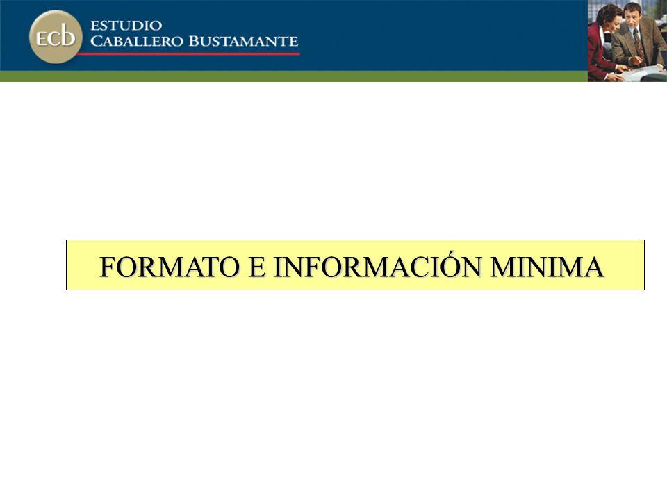 FORMATO E INFORMACIÓN MINIMA