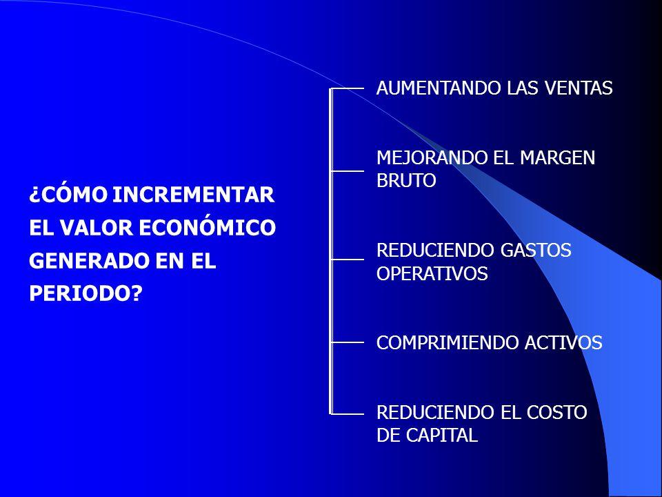 SURGEN EN UNA EMPRESA DESDE EL MOMENTO EN EL QUE OPTA POR UNA ALTERMNATIVA DE INVERSION DESECHANDO OTRA.