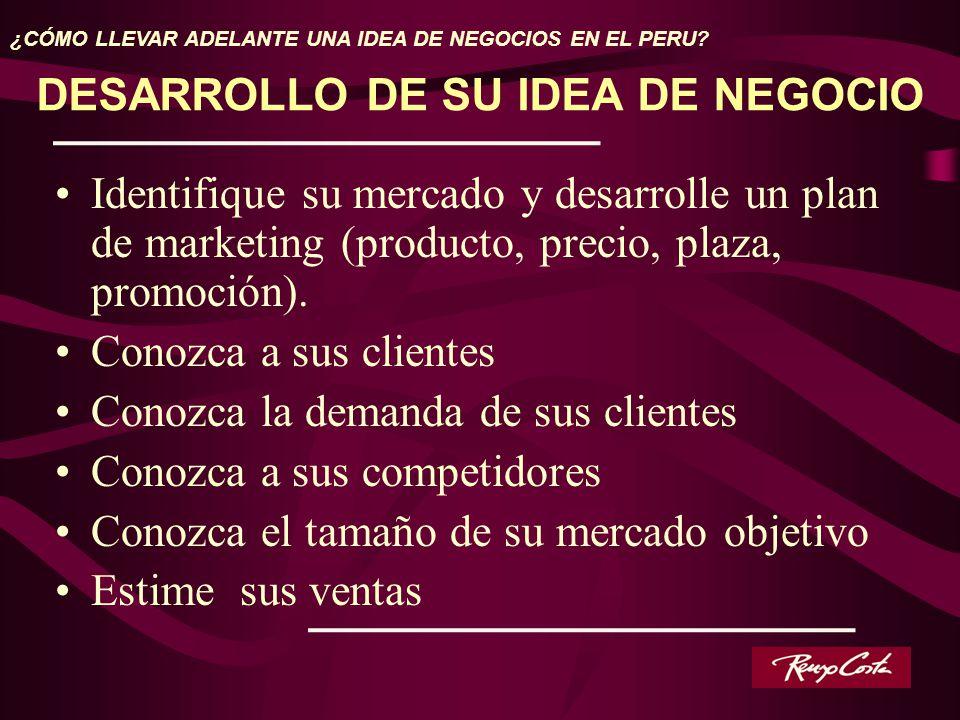 Identifique su mercado y desarrolle un plan de marketing (producto, precio, plaza, promoción). Conozca a sus clientes Conozca la demanda de sus client