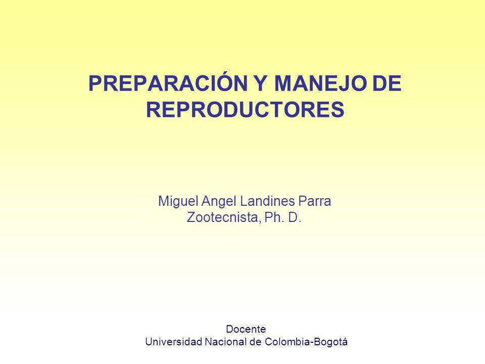 Miguel Angel Landines Parra Zootecnista, Ph. D. PREPARACIÓN Y MANEJO DE REPRODUCTORES Docente Universidad Nacional de Colombia-Bogotá