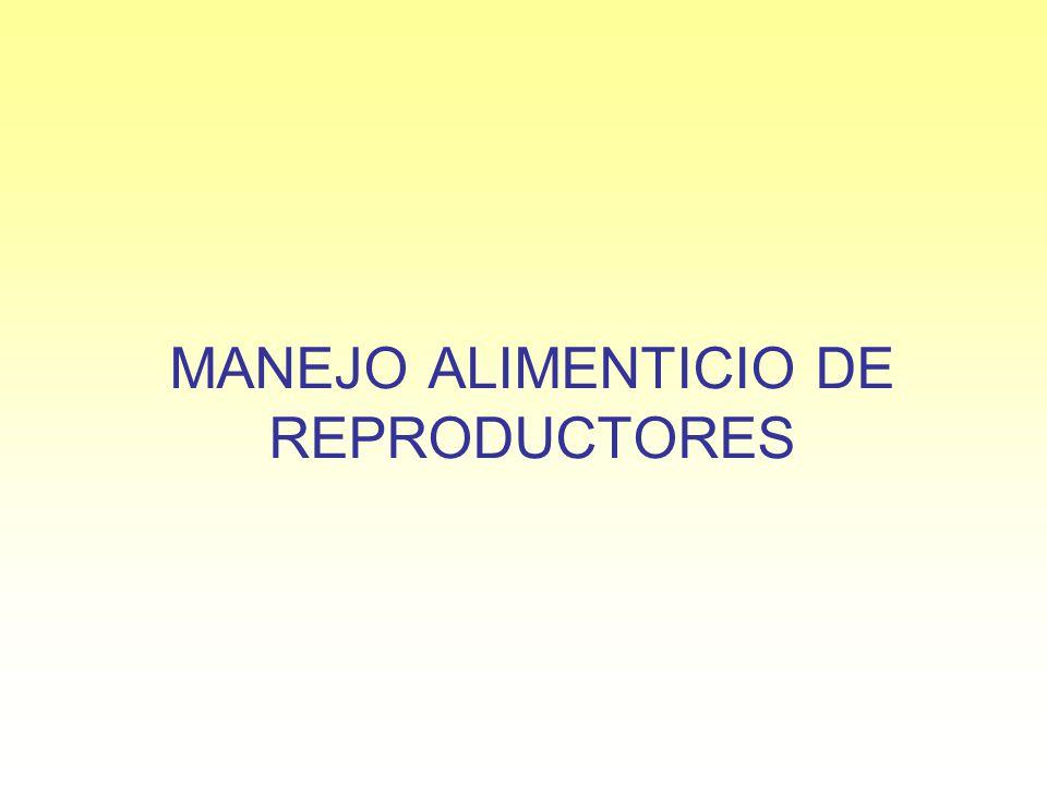 MANEJO ALIMENTICIO DE REPRODUCTORES