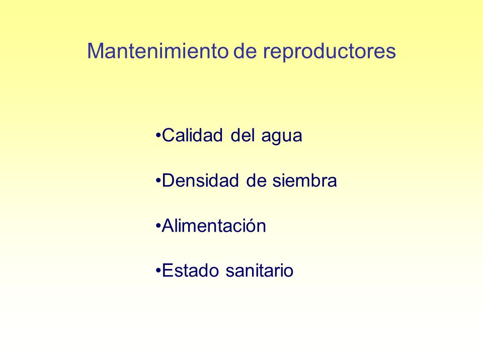 Mantenimiento de reproductores Calidad del agua Densidad de siembra Alimentación Estado sanitario
